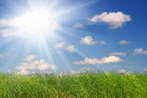 Blir framtidens somrar som förra sommaren?