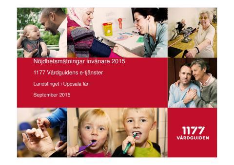 Mätning av invånarnas nöjdhet e-tjänster 2015