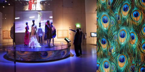 Pressvisning - Feathers på Etnografiska museet