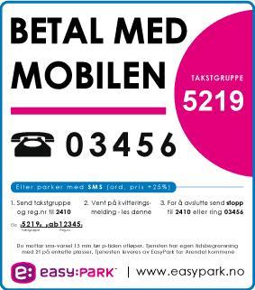 Enklere parkering i Sommer-Arendal