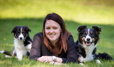 Border collies med sin matte