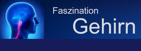 Informationstag für Trainer, Berater und Coaches in Köln