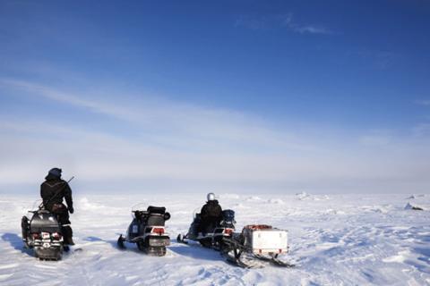 Fart og spenning på Svalbard