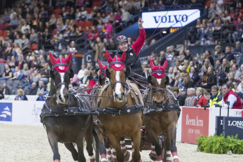 175 dagar kvar till Göteborg blir en häststad