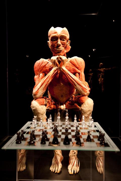 Schackspelaren