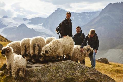 Zermatt, Stafelalp, Wanderung mit dem Hotelier vom Romantikhotel Julen