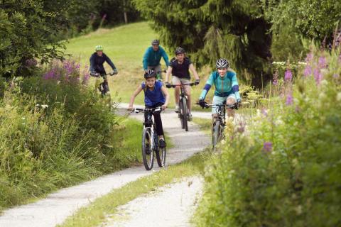 Besökarna från Nederländerna ska bli fler i Dalarna