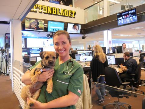 Inslag på Aftonbladets morgonTV ,TV3,  med veterinär Marie Jury, Väsby Djursjukhus: Det här ska du tänka på när du ska resa med ditt djur!