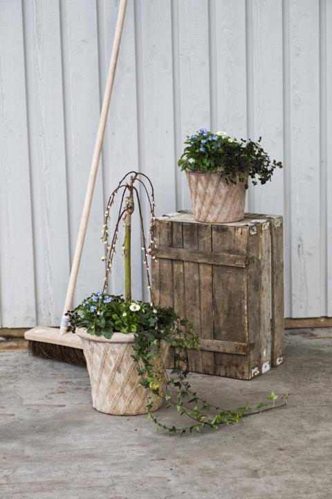Vårplantering utomhu