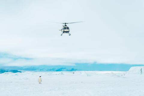alphaddicted_Antarktis_Tim David Mueller-Zitzke_von Sony_2
