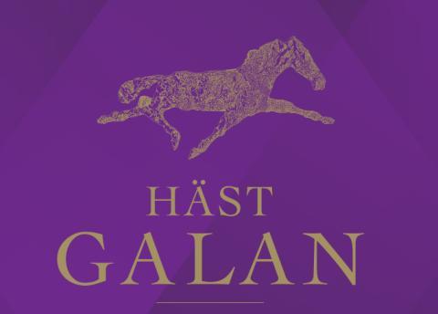 Följ Årets Hästgalan på ATGPlay.se