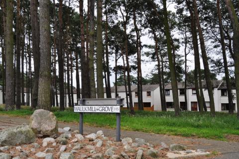 Move to revoke preservation order on Elgin trees