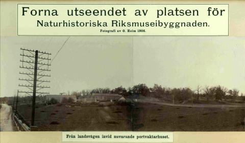 Naturhistoriska riksmuseet 100 år - så såg det ut innan.