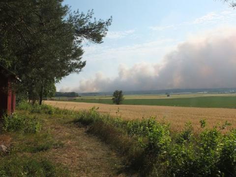 Skogsbrand: Tänk på detta om du har djur