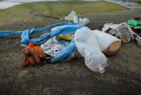 HaV ger 1,9 miljoner till arbete mot marin nedskräpning