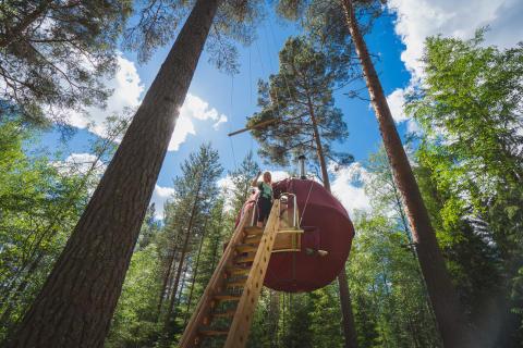Kom sovende til en unik oplevelse i Sverige