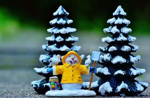 Säter söker vackraste julgranen