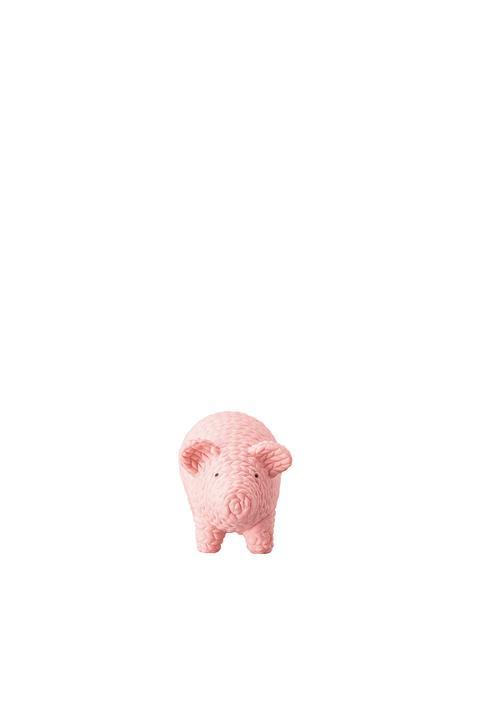 R_Pets_Schwein_Alley_klein