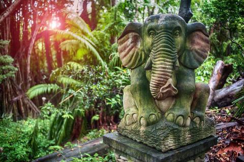Hvor skal man bo på Bali? - Rejse til Bali