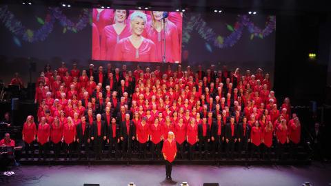 Stjärnjul 25 års jubileum - julkonsert med körerna Rönninge Show Chorus och The EntertainMen den 9, 15 & 16 dec, 2017