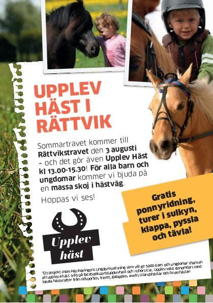 Upplev Häst travar in i Rättvik – sommartrav för alla