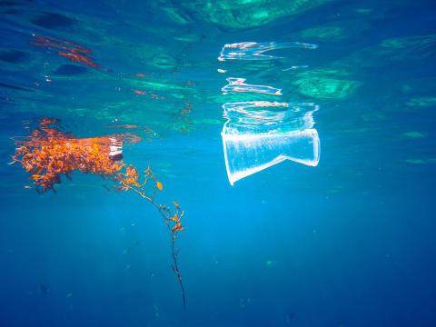 Et hav af plastik #2
