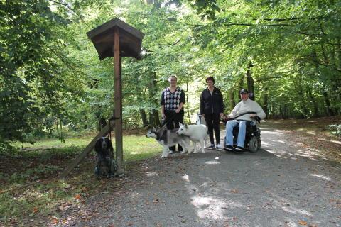 I vår kan du gå Hälsans stig runt Svaneholmssjön