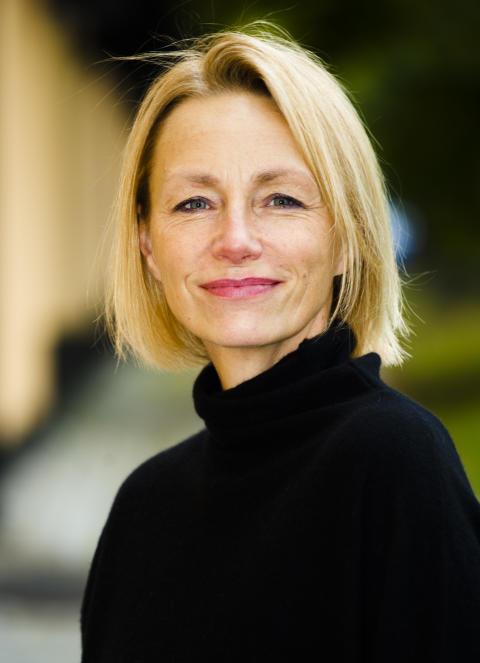 Ann Follin, Överintendent Statens museer för världskultur