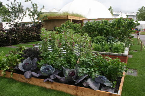 Our 'Health for Life' show garden at BBC Gardeners' World Live in Birmingham