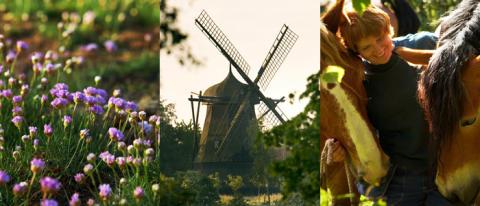 Vårlust på Fredriksdal – en dag i vårens tecken