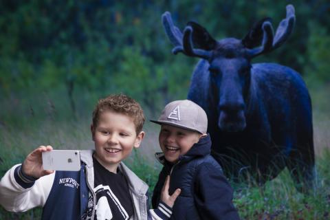 Sichere Selfies: Norwegen macht Touristen spielerisch auf richtigen Umgang mit der Natur aufmerksam