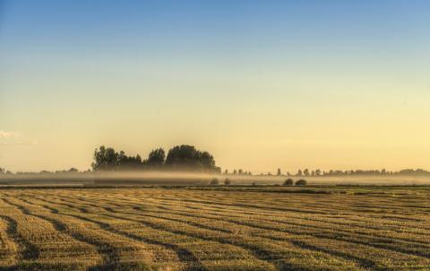 Agrobiotalous aamukahvit: Biokaasun mahdollisuudet kotieläintiloille