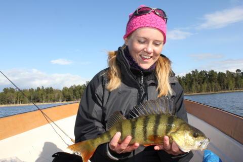 Goda förutsättningar för företagande inom svensk fisketurism