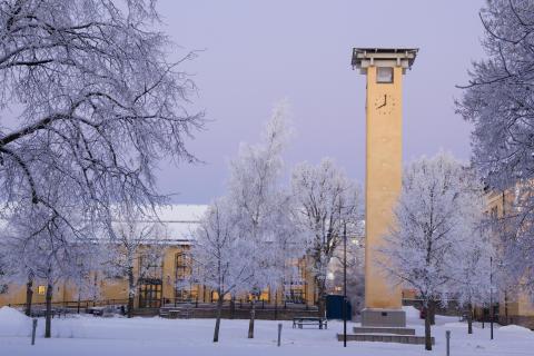 Vårterminen startar på Högskolan i Skövde
