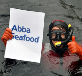 Abba och dykföreningar städar Kungshamns vatten