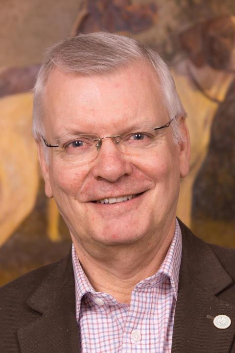 Pekka Olson, Svenska Kennelklubbens ordförande