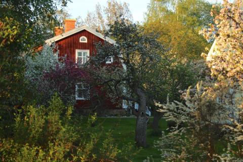 Astrid Lindgrens barndomshem i vårskrud