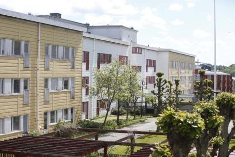 Stena Fastigheter tar hjälp av Rotpartner vid förnyelse av vårdbyggnad