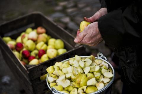 Den stor æblefest i Lützhøfts Købmandsgård. Kredit Museumskoncernen ROMU