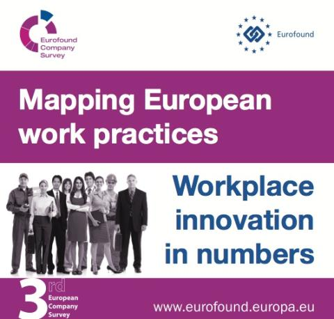 First Findings of the European Company Survey (ECS)
