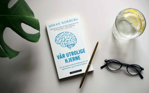 Ny kunnskap om vår formbare hjerne