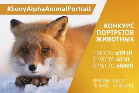 Компания Sony запустила конкурс #SonyAlphaAnimalPortrait