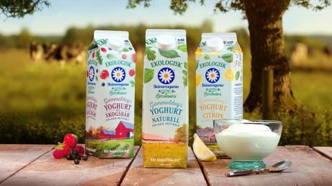 Hjordnära lanserar gammaldags yoghurt med naturlig fetthalt