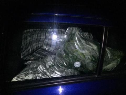 Police recover thousands of pounds worth of cannabis