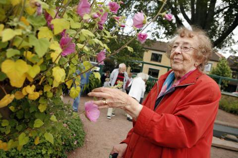 Riktad information till alla 85-åringar ska öka kunskapen