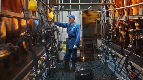 Arla ägs av mjölkbönder från sju länder i Nordeuropa