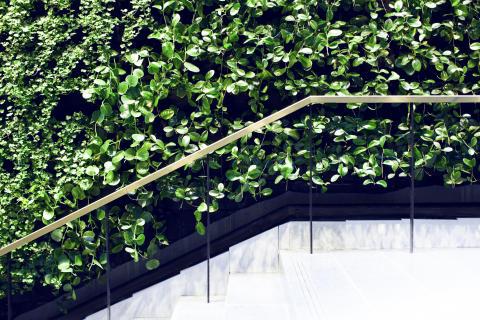 Växtvägg Mannheimer Swartling