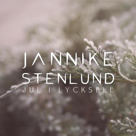 Jannike Stenlund släpper låt om den sagolika vinterstämningen i södra Lappland!