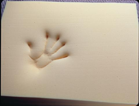 Tempur General Handprint
