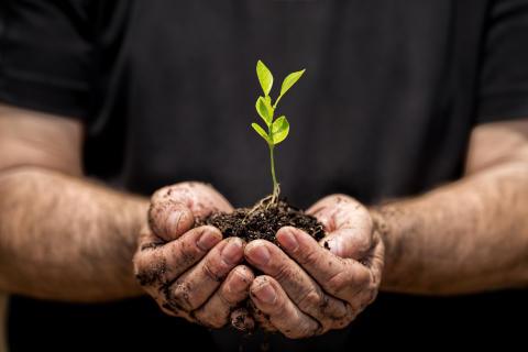 Lancement de la Semaine du Développement Durable Chez Panalpina !